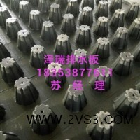 4公分蓄排水板)濮阳5公分排水板厂家_图片