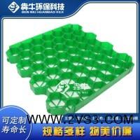 丰都县热点小区车位绿化塑料植草格_图片